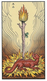 Ace of Wands: Alchemical Tarot