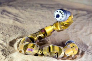 Robotic snake